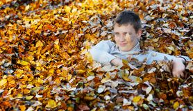 Boy in autumn leaves Royalty Free Stock Photography