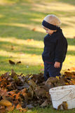 Boy in autumn leaves Royalty Free Stock Photos