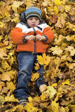 Boy in autumn leaves royalty free stock photo