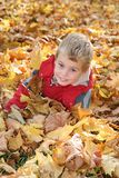 Boy in autumn leaves Royalty Free Stock Images