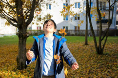 Boy with autumn leaves Stock Images
