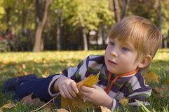 Boy in autumn park Stock Photography