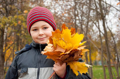 The Boy in the autumn park Stock Images