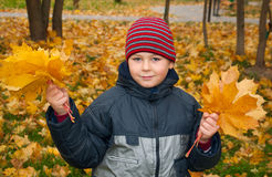 The Boy in the autumn park Royalty Free Stock Photography