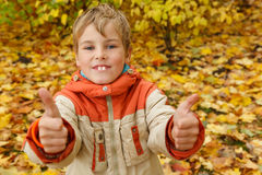 Boy in autumn park against fallen down leaves Royalty Free Stock Images