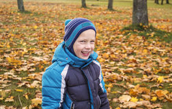 Boy in autumn Park Royalty Free Stock Image