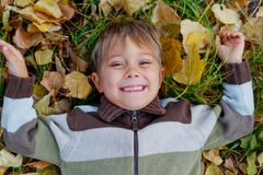 Boy in a autumn park Royalty Free Stock Photos