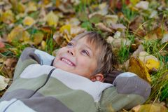 Boy in a autumn park Stock Image