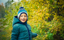Boy is  in autumn park Stock Images