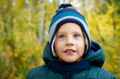 Boy is in autumn park Royalty Free Stock Photography