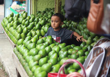 Boy with avocados at the market Stock Photography