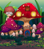 A boy at the back of the mushroom house Royalty Free Stock Photos