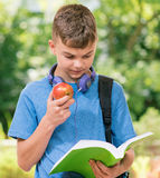 Boy back to school Stock Image