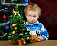 Boy on the background of the Christmas tree Stock Photography