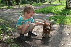 Boy with badgerdog 2 royalty free stock photo