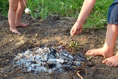 The child bakes the marshmallow over the fire. royalty free stock photography