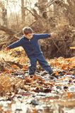 Boy balancing on rocks in creek Royalty Free Stock Photography