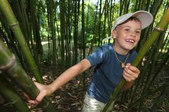 Boy in bamboo grove in  Sochi arboretum Stock Image