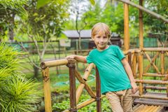 The boy at the bamboo playground. Eco-friendly playground stock photo
