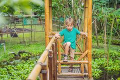 The boy at the bamboo playground. Eco-friendly playground royalty free stock image