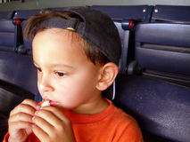 Boy at baseball game. Boy eating at baseball game Stock Photography