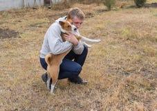 Boy and Basenji dog playing Royalty Free Stock Photography
