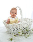 Boy in a Basket stock image