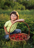 boy with a basket of berries Royalty Free Stock Image
