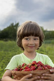 Boy with basket of berries Stock Photography