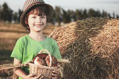 Boy with basket of buns in the background of haystacks in a field royalty free stock photo