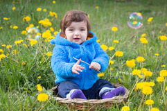 Boy in the basket on the grass Royalty Free Stock Images
