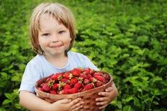 Boy with basket of strawberry. Cheerful boy with basket of strawberry Royalty Free Stock Photography