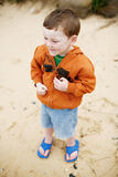 Boy at the Beach Stock Photography