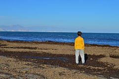 Boy In A Beach of Seaweed. A boy looks out to sea whilst standing on a beach that has been covered in seaweed Royalty Free Stock Photo