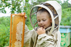 The boy beekeeper saves fresh honey from a honey cell on an apiary. Fresh honey Apiculture. Stock Image