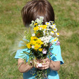 Boy behind the bouquet of flowers Royalty Free Stock Images