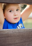 Boy behind the fence. Little boy looks out of the fence stock photo