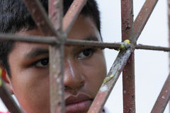 Boy Behind An Iron Lattice Stock Image