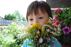 Boy behind the  summer bouquet of wildflowers Royalty Free Stock Photo