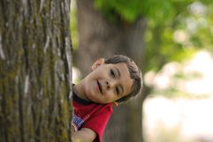 Boy behind tree. Playfull Little boy hiding behind tree Royalty Free Stock Images