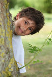 Boy behind tree trunk Stock Images