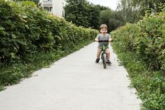 Boy on a bicycle Royalty Free Stock Image