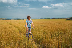 Boy  on a bicycle on mellow rye field. Teenage boy  on a bicycle on mellow rye field Royalty Free Stock Photo