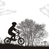 Boy on a bicycle, vector illustration. Vector illustration boy on a bicycle in the nature Royalty Free Stock Images