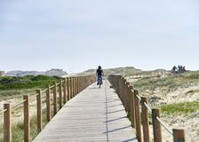Boy in with the bicycle on the walkway stock images