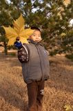 Boy with the big leaves Royalty Free Stock Photo
