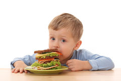 Boy and big sandwich Stock Image
