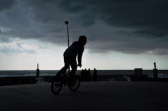 Boy on bike . Royalty Free Stock Image