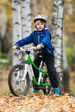 Boy on the bike Royalty Free Stock Photography