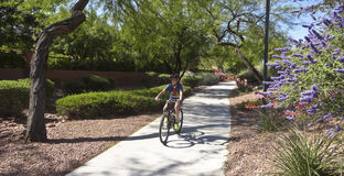 A Boy on a Bike Rides in Summerlin Stock Photo